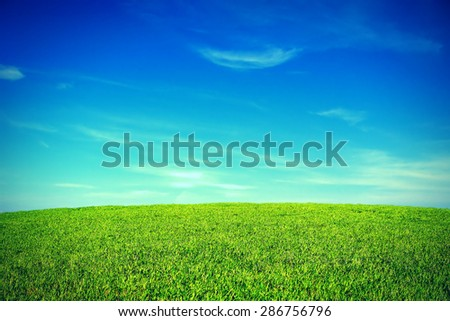 Toned Photo of the summer landscape with green field and blue sky - stock photo