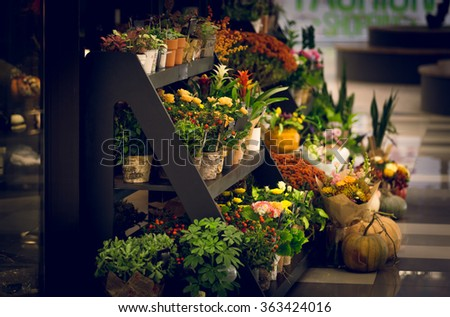 Toned photo of wooden stand with flowers at florist shop - stock photo
