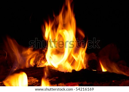 Tongues of flame with the black background - stock photo