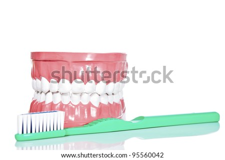toothbrush and jaws, isolated on white background