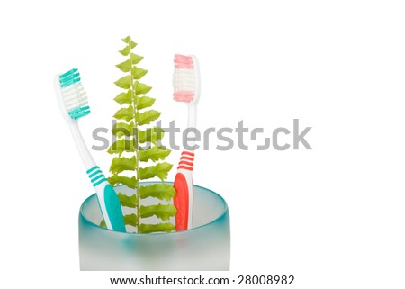 Toothbrushes and leaf fern a isolated on white background. - stock photo