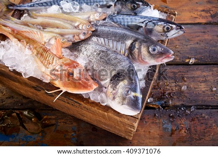 Top down view on multiple fresh raw mackerel and other fish on cutting board surrounded by crushed ice - stock photo