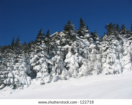 Top of Killington Peak, Vermont. - stock photo