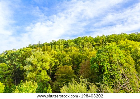 Top trees on mountain peak under a cloudy moody blue sky - stock photo