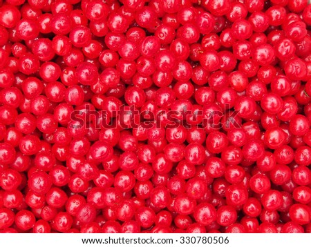 Top view at the heap of nanking cherry fruits - stock photo