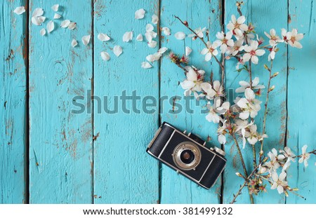 top view image of spring white cherry blossoms tree next to old camera on blue wooden table  - stock photo