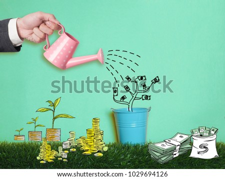 Top view Investment is like planting trees. Take care it will provide a good growth on colour background.Watering can and money tree drawn concept for business investment, savings and making money.