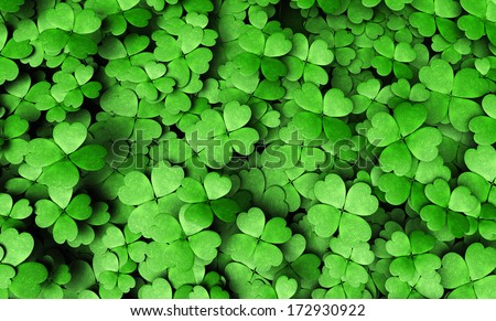 top view of a expanse of four-leaf clovers of different height and dimensions - stock photo