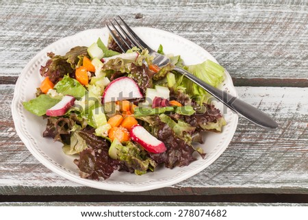 Top view of an organic freshly chopped Italian salad - stock photo