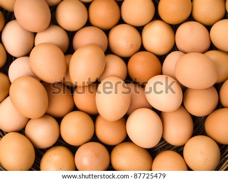 Top view of egg for web background - stock photo