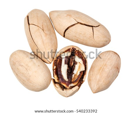 top view of few pecan nuts in shell isolated on white background