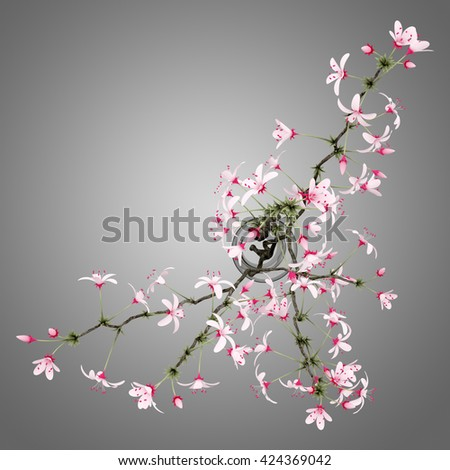 top view of flowering tree twigs in glass vase isolated on gray background. 3d illustration - stock photo