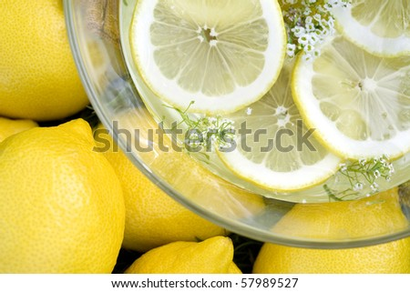 Top view of fresh lemons on a grass and sliced lemons in bowl of water