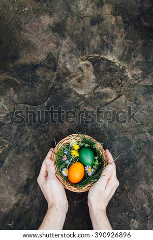 Top view of man holding Easter eggs in the nest on rustic wooden background with copy space - stock photo