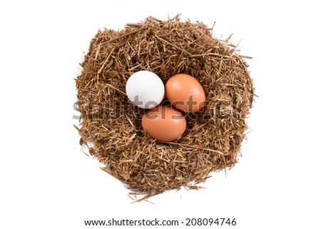 Top view of organic and natural eggs in nest, isolated on white background.