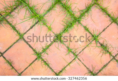 Top view of pavement with green grass. - stock photo