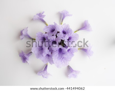 Top view of purple  flower bouquet, lilac floral  on white background, image blur style - stock photo