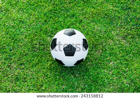 Top view of Soccer Football on Grass Field (in Stadium or Local Field)  Sport Concept and Idea  / for background, wallpaper, texture. Standard Ball Black and White. - stock photo