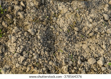 Top view of soil ground at the farmland in the countryside of Viet Nam.  Agricultural and rural background. - stock photo
