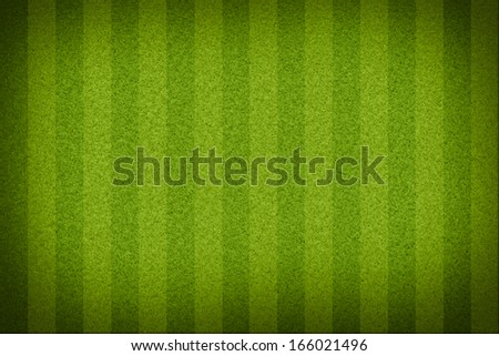 Top view of stripped soccer filed without white lines. (org. size: 2999x2000 px) - stock photo