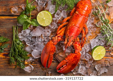 Top view of whole red lobster on ice - stock photo