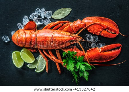 Top view of whole red lobster with ice and lime on a black slate plate - stock photo