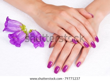 Top view of woman hands with purple manicure and flowers - stock photo