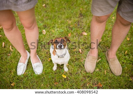 Top view on a dog. Woman and man with their nice dog in the park. summer walk with a dog. Beagle breed dog sitting on green grass. top view on family with a dog. - stock photo