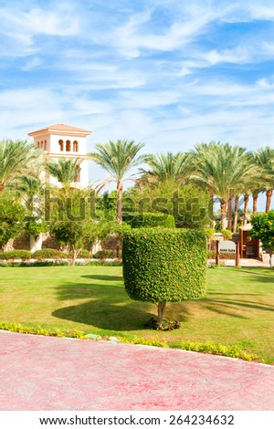 Topiary tree in Egyptian formal garden. Sharm-el-sheikh. Summertime outdoors. - stock photo