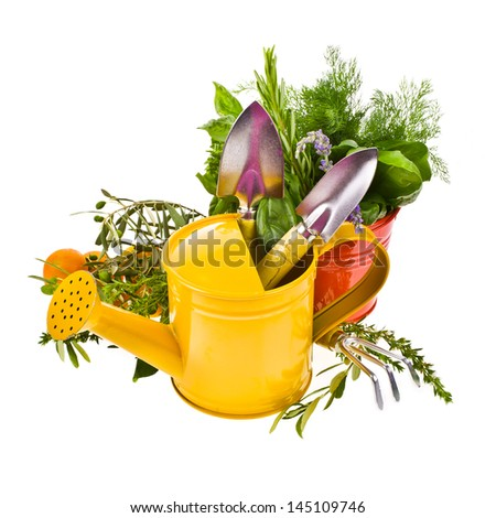 topic of gardening - tools for working in the garden, shovels and rakes, bucket, watering can, herbs for planting isolated on white background - stock photo