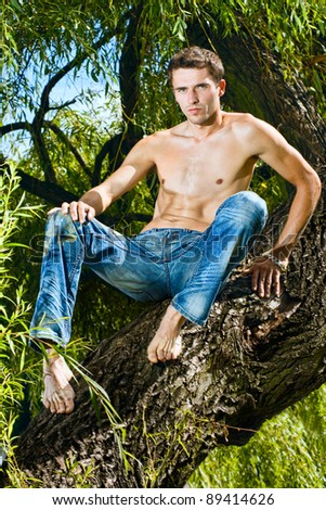 Topless male model in jeans trousers sitting tree, outdoor shot - stock photo