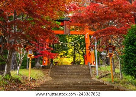 Torii gate to chureito pagoda in autumn, Fujiyoshida, Japan - stock photo