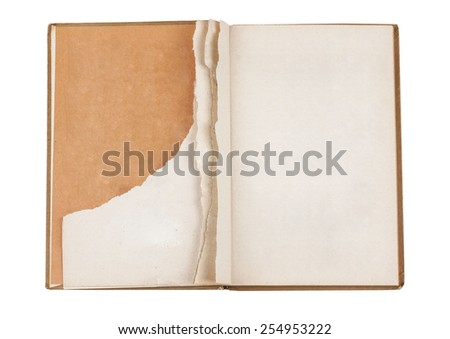 Torn old book - stock photo