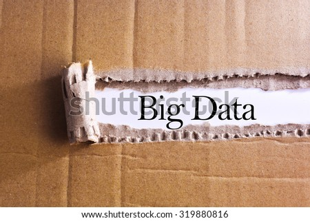 Torn paper box with word Big data  - stock photo