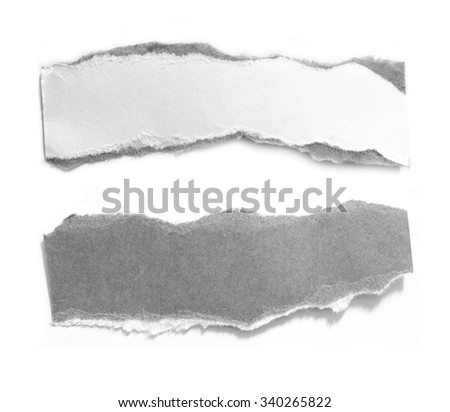 torn paper isolated over white background - stock photo