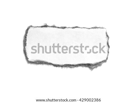 Torn paper on white with space for text. Copy space - stock photo