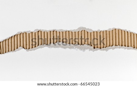 Torn paper strip series - white cardboard ripped apart showing underlying corrugated brown layer - stock photo