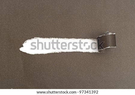 Torn Paper with space for text - stock photo