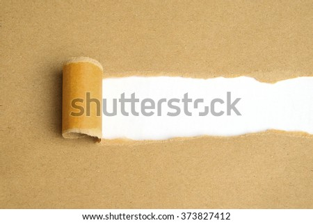 Torn Paper with space for text with white background - stock photo