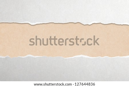 torn paper with white copy space - stock photo