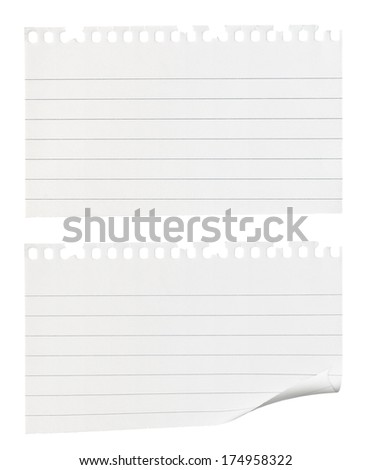Torn pieces of notepaper one with a curled edge isolated against a white background - stock photo