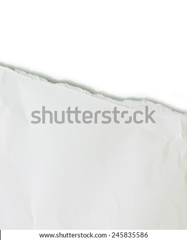 Torn pieces of paper - stock photo