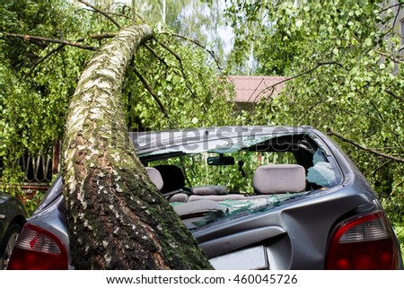 Tornado in the city of Minsk, Republic of Belarus 13.07.2016, consequences of natural disaster of destruction of inhabited constructions more than 100 trees are also tumbled  - stock photo