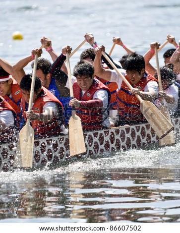 TORONTO - JUNE 21: University of Toronto's Victoria College Paddling Club Dragon Boat racing at the21st TELUS Toronto Dragon Boat Racing Festival at Toronto Island, June 20, 2009 Toronto, Canada - stock photo