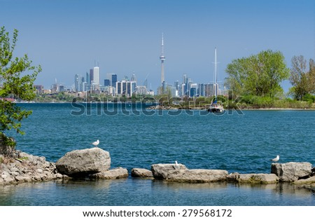 Toronto skyline, sailboat and seagulls - stock photo