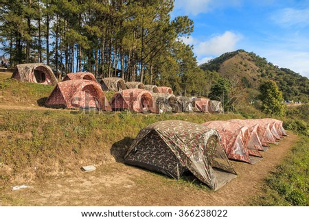Tourist tents in camp among meadow on the mountain with pine tree and blue sky - stock photo