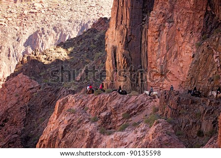 Tourists riding mules on River Trail in Grand Canyon. - stock photo
