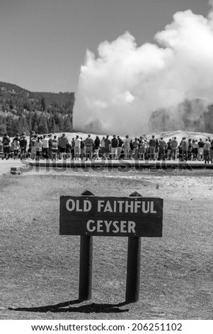 Tourists watching the Old Faithful erupting in Yellowstone National Park, USA in black and white - stock photo
