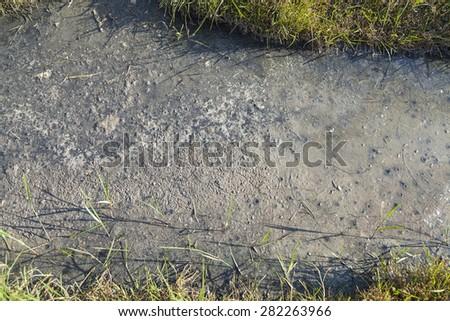 Toxic dirty mud - stock photo