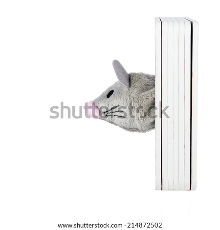 Toy mouse head isolated on white background - stock photo